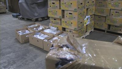 Ex-medewerker fruitbedrijf aangehouden voor cocaïnesmokkel