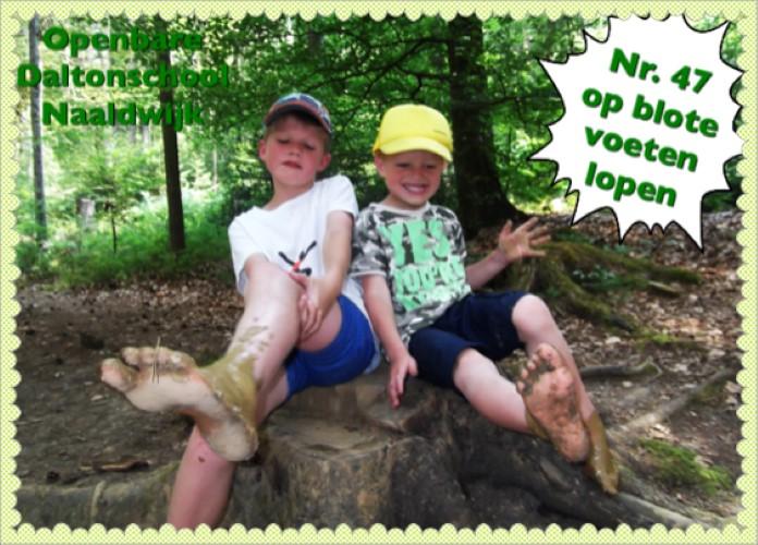 Openbare Daltonschool Naaldwijk gaat voor Groen & Doen