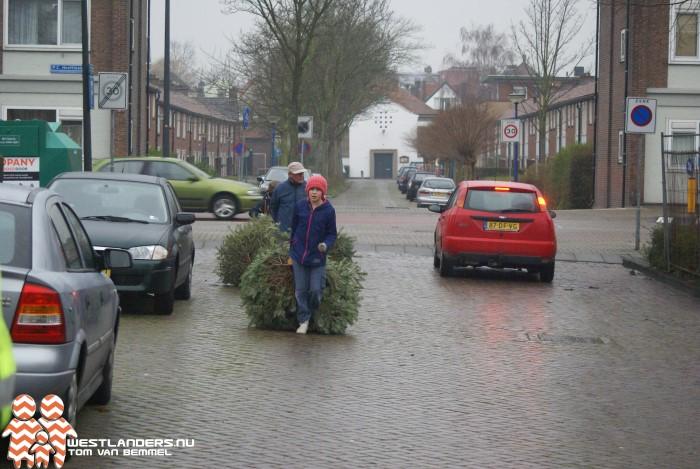 Inleveractie kerstbomen in Maassluis