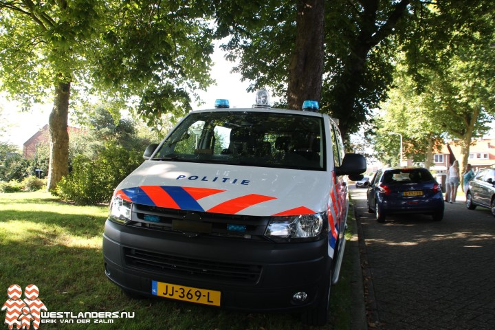 Incidenten in Midden Delfland