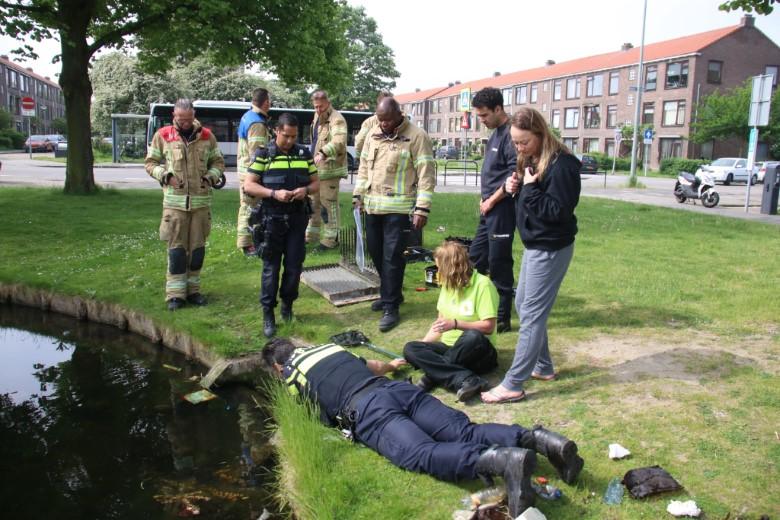 Hulpdiensten redden eendjes uit waterzuivering