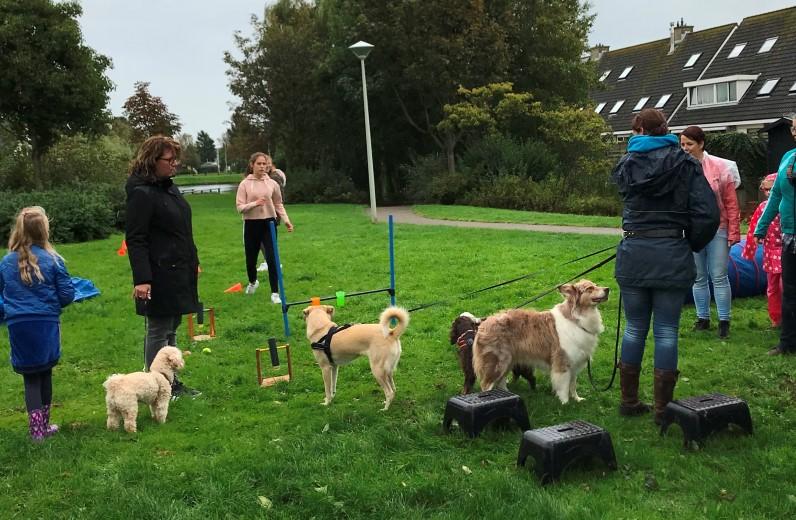 Hondenfeestje op Burendag door SchoonMoeder van het Westland