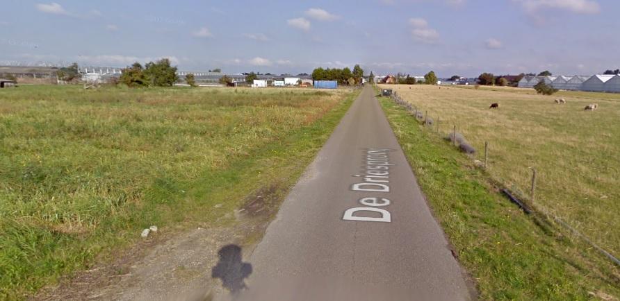 Stand van zaken planontwikkeling Driesprong Kwintsheul