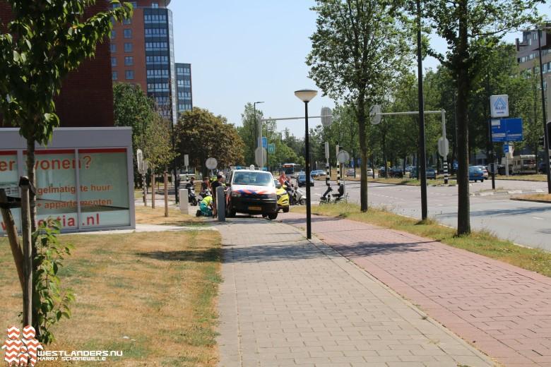 Stand van zaken veiligheid voetgangersoversteekplaatsen Maassluis
