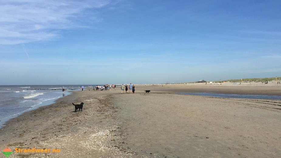 Uniek herfstweer zorgt voor veel strandbezoekers