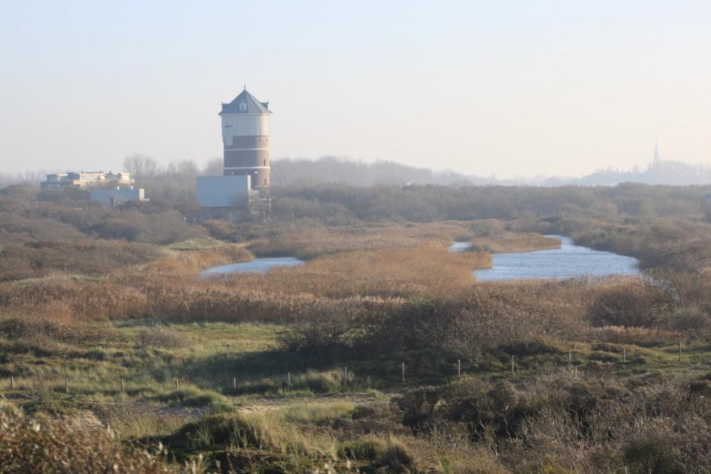 Open dag watertoren en natuurgebied Solleveld