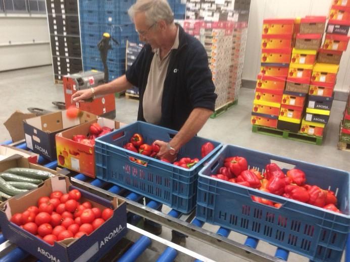Groente- & Fruitbrigade redt eerste paprika's en tomaten