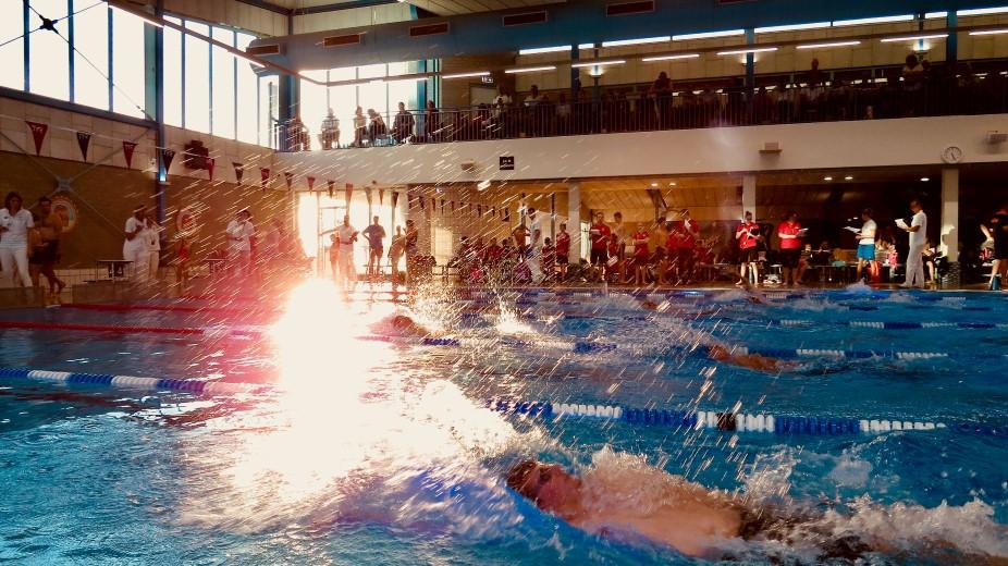 Zwemvereniging Westland pakt goud op sprintwedstrijd