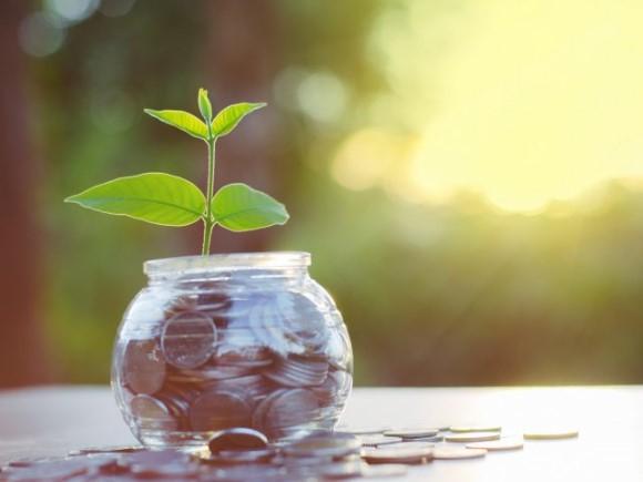 Kredietunie Westland helpt MKB-ondernemers bij het verkrijgen van kennis en krediet