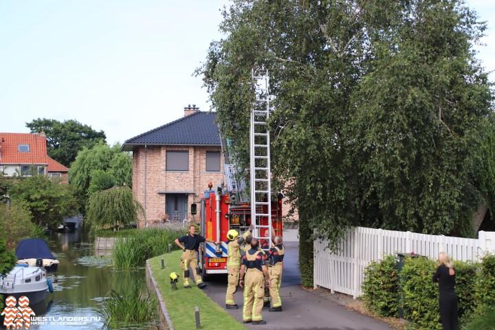 Kat met brandweerfobie duikt in de sloot