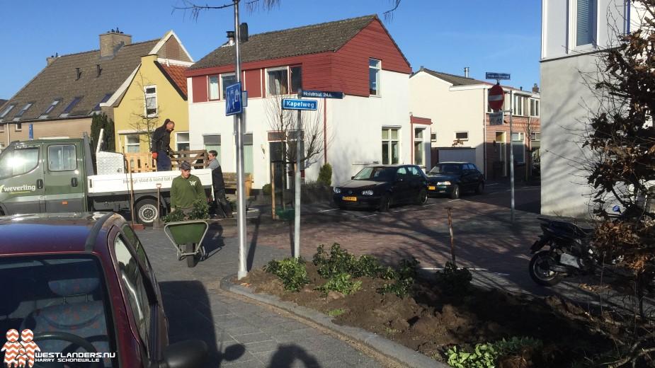 Eerste jaarcijfers bomenkap en herplant in Westland bekend