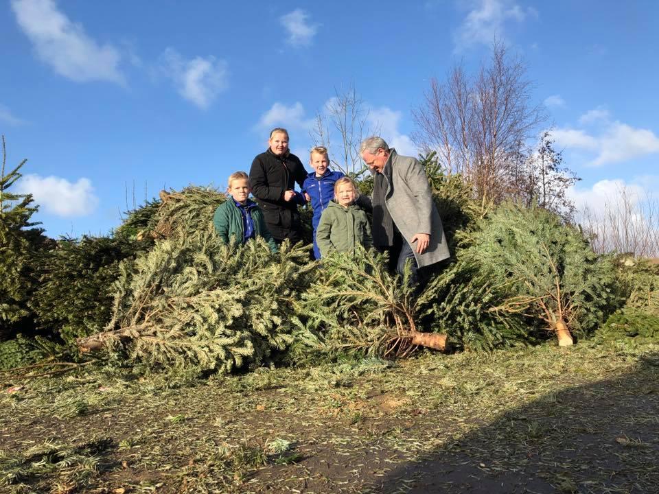 351 kerstbomen ingeleverd voor Make-A-Wish