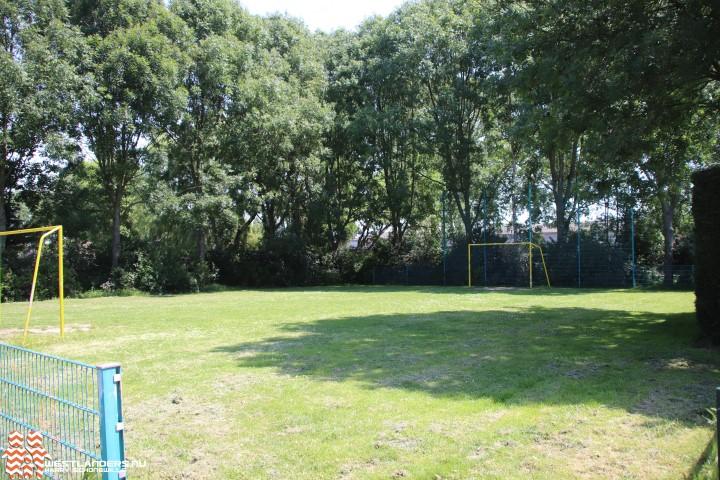 Vergunning verleend voor kappen 95 bomen in Boerstraat