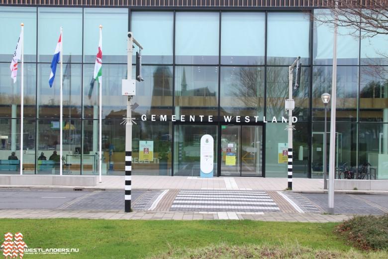 Subsidie voor online winkelstraat in Westland