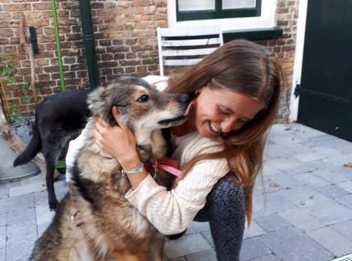 Weggelopen hond weer veilig thuis