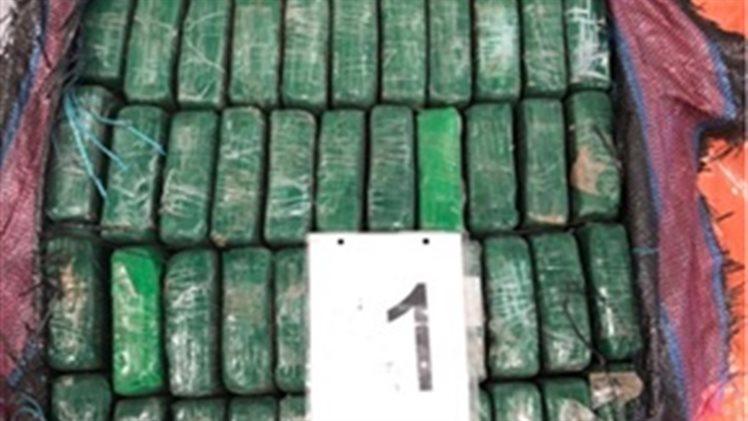 Douane vindt 1000 kilo cocaïne tussen bananen