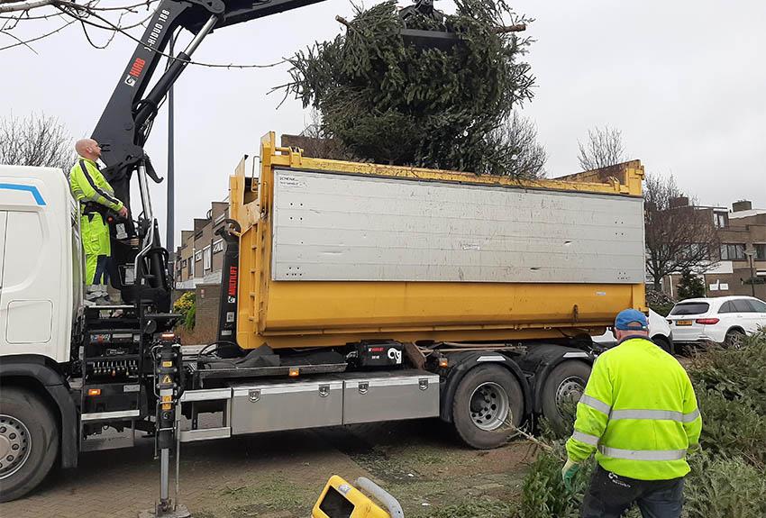 Stadsbedrijf Maassluis zamelt 2153  kerstbomen in