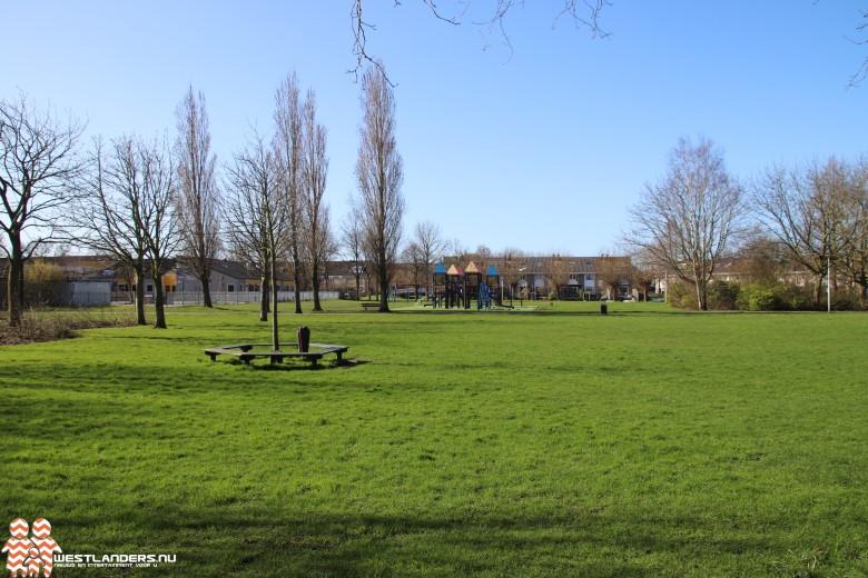 Collegevragen inzake calisthenics-freerunning in Dreespark