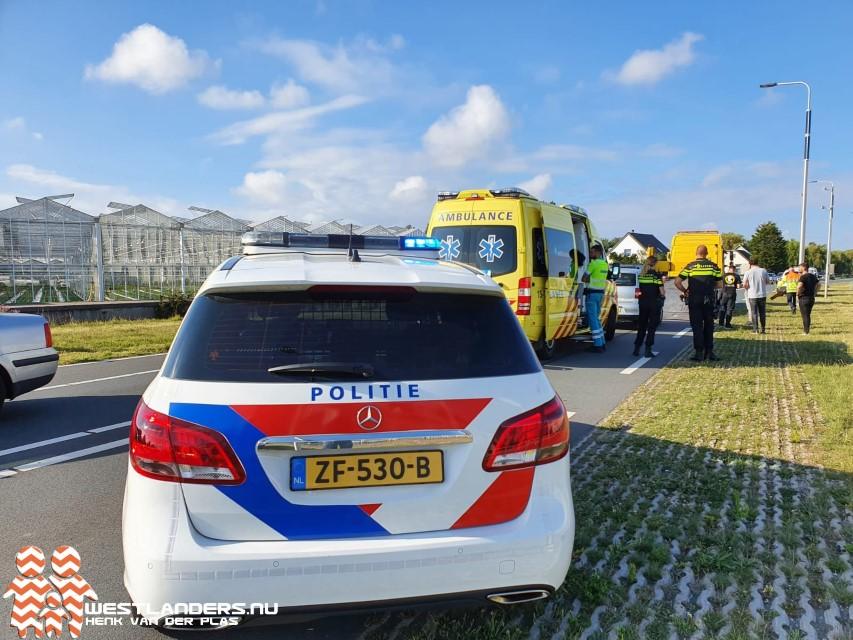 Gans veroorzaakt ongeluk op de Nieuweweg