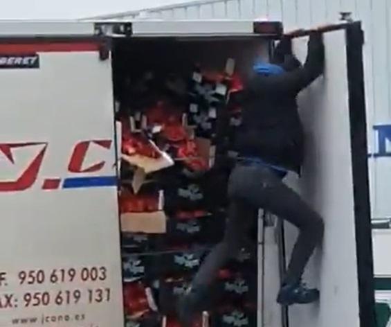 Aankomst illegalen in Poeldijk