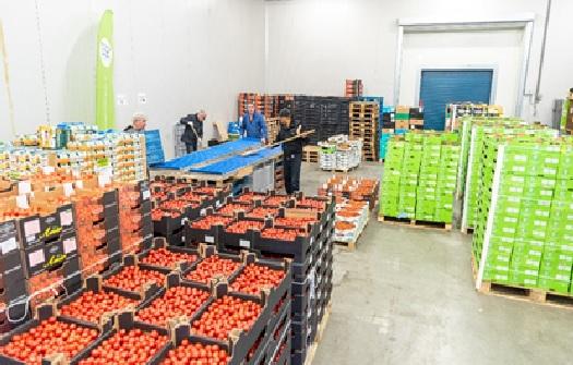 Recordopbrengst groente en fruit voor voedselbanken