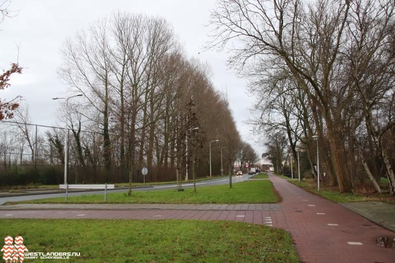 Kap hoge bomen bij gelijknamig sportpark