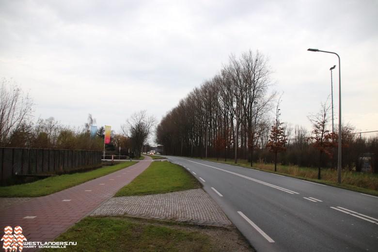 Tekst en uitleg omtrent kap 95 bomen bij Galgeweg