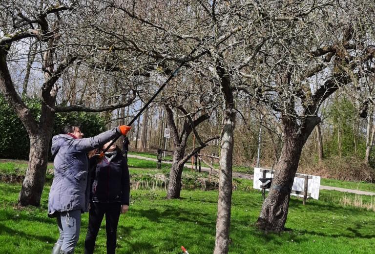 Maak kennis met de boomgaard Buitenplaats Vlaardingen, met picknick!