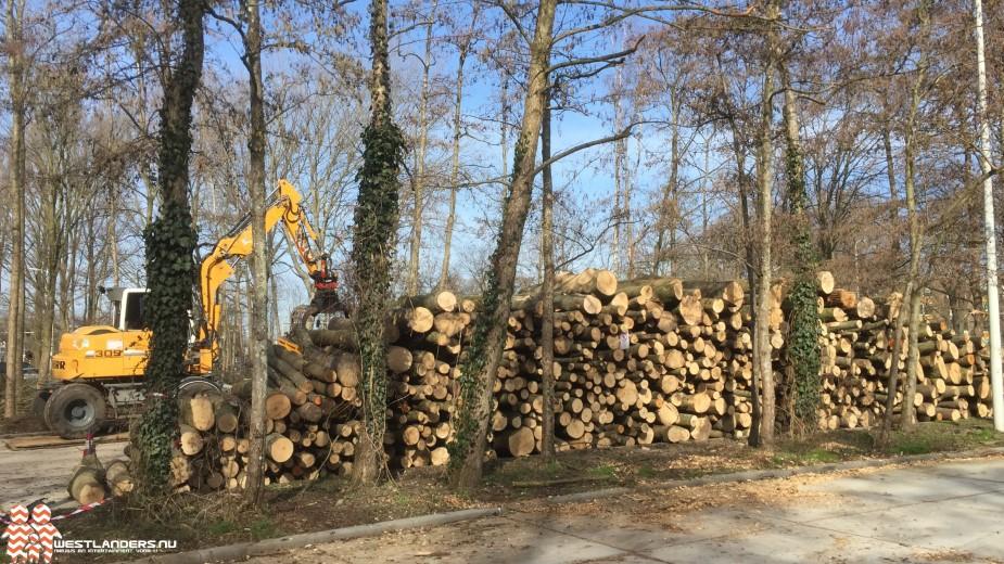 Stijging gebruik van biomassa in 2020