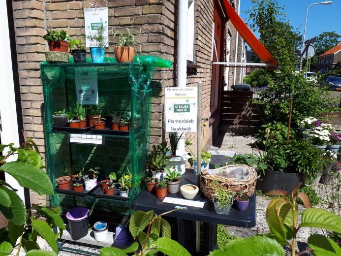 Steeds meer Plantenbiebs in het Westland