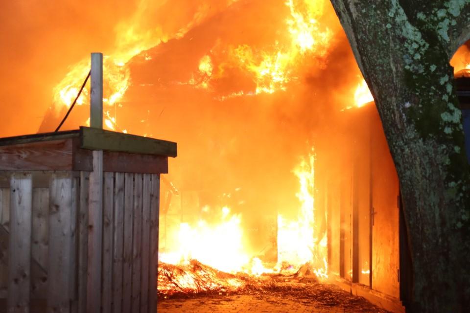 Jeugddetentie voor brandstichters Plaswijckpark