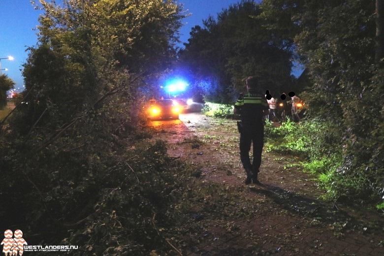 Automobilist crasht in bosschages N211