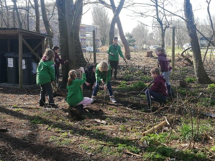 Welpen volgen goede voorbeeld Scouts op eigen Boomplantdag