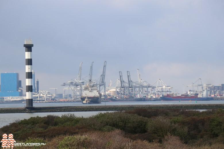 Meerdere drugsvangsten door douane in de haven