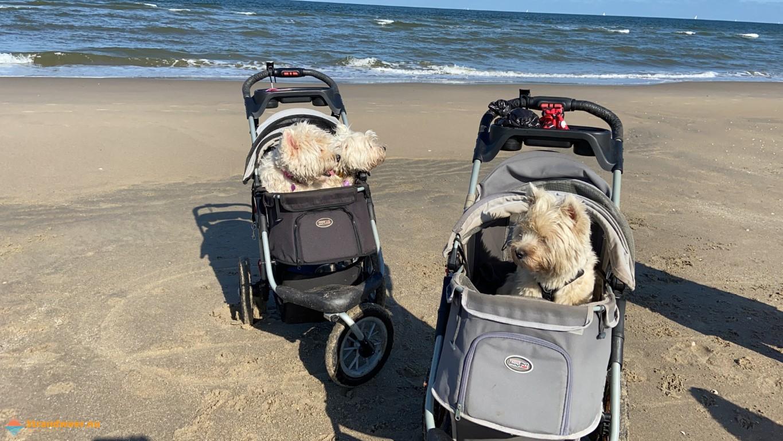 Eerste echte stranddag in augustus