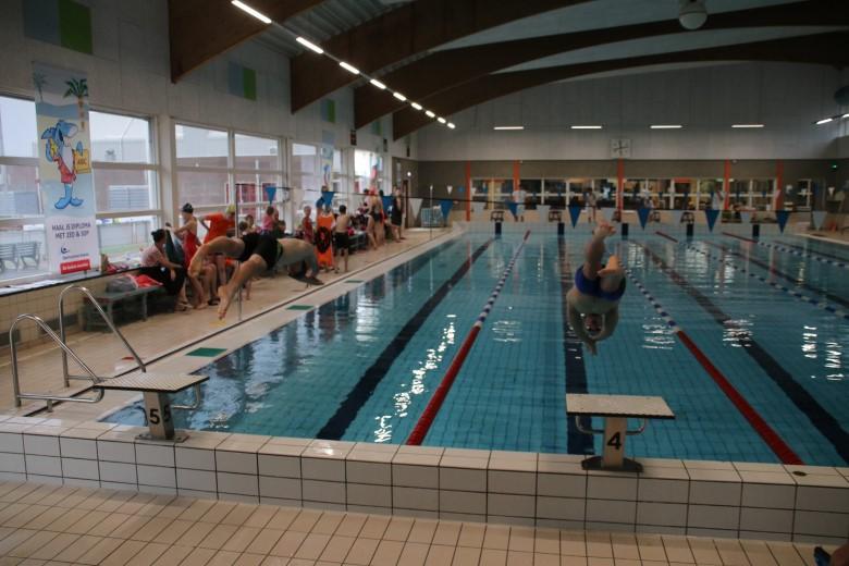 Westland Swimming Stars clubkampioenschap