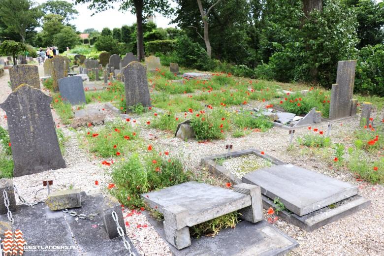 Ruim honderd graven vernield bij Beukenhage
