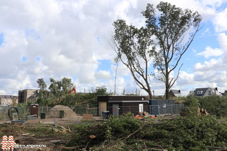Reactie gemeente op bomenkap Rijnvaartweg