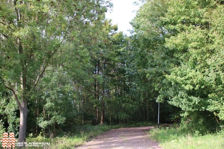 Collegevragen inzake Schefferkampbos-compensatie door herplant bomen