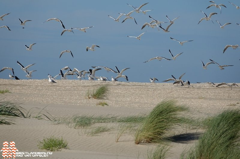 Resultaten handhavingsactie langs Nederlandse kust