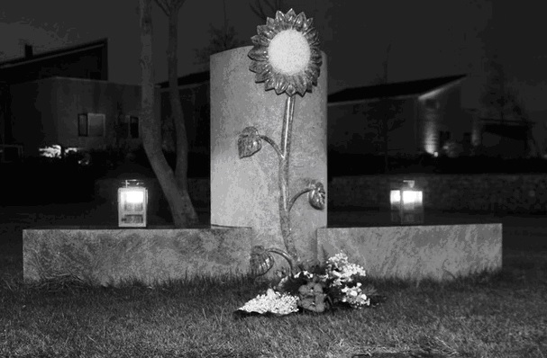 Geslaagde lichtjesavond in Naaldwijk