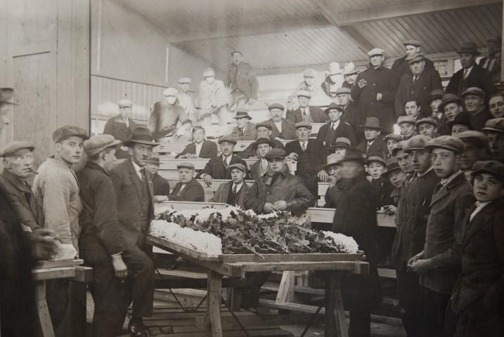 Geschiedenis van de ondernemende Westlanders