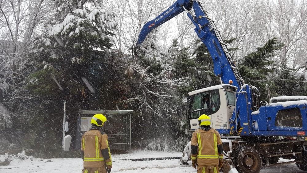 Sneeuwpret en overlast in het Westland