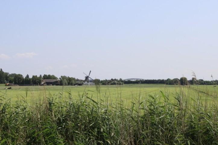 Melkveehouders kopen weidevogelgebieden van provincie