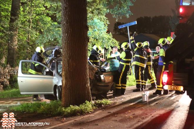 Bestuurder gewond na botsing met auto tegen boom
